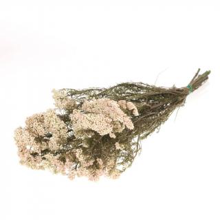 Fleur de riz stabilisée naturelle (100g)
