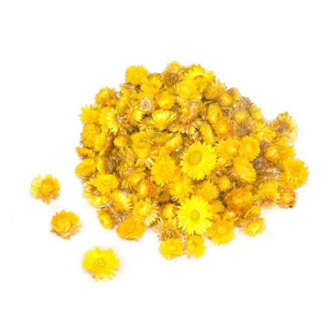Têtes d'hélichrysum séché jaune (50gr.)