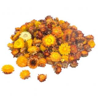 Têtes d'hélichrysum séché orange (50gr.)