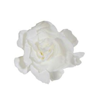 Gardenia stabilisé blanc (3 têtes)