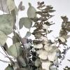 Eucalyptus mix séché (env 120gr.)