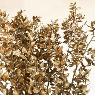 Ruscus stabilisé doré (env 100gr.)