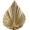 Feuille de palmier doré (10 tiges)