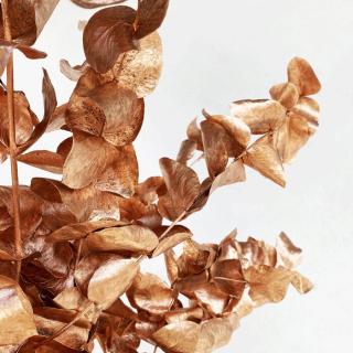 Eucalyptus séché cuivre (env 100gr.)