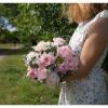 Pivoines roses et eucalyptus - France Fleurs