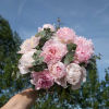 Bouquet Portofino - France Fleurs