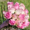 Bouquet de mariée Alice - rose