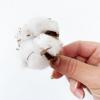 Boule de coton (x10)