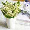 50 brins de muguet - achat muguet - France Fleurs