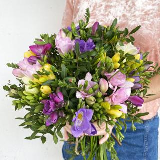 Bouquet de freesias - fleurs fraîches - France Fleurs