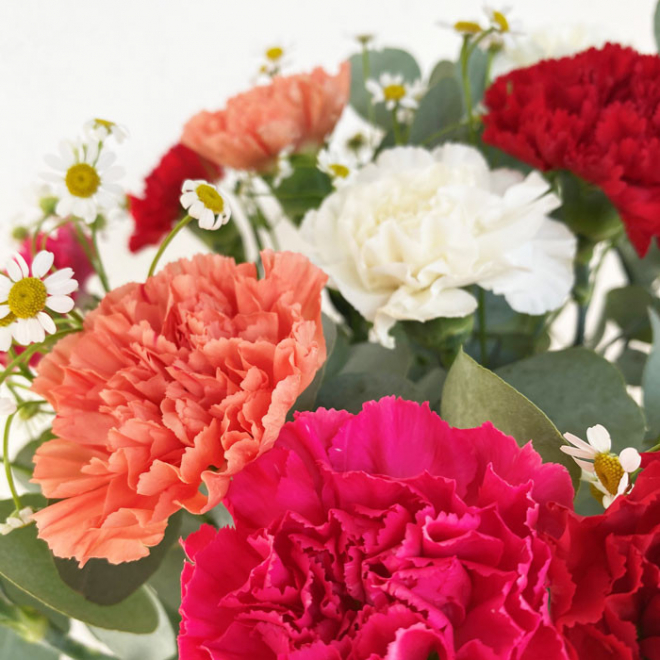 Bouquet d'oeillets - livraison fleurs - France Fleurs
