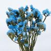 Statice séché bleu ciel (5 tiges)
