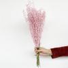 Lepidium séché rose (env 80gr.)