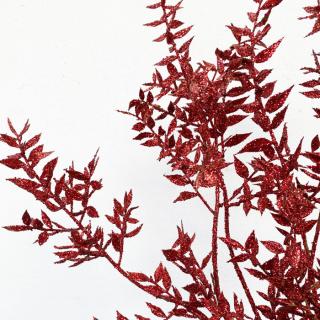 Ruscus séché rouge (5 tiges)