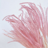 Plumeau rose (env 80gr.)