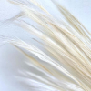 Herbe de renard séchée blanche (env 120gr.)