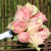 Bouquet Demoiselle Alice
