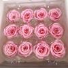 12 roses éternelles roses mini