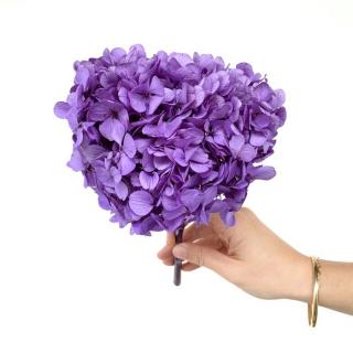 Hortensia stabilisé violet (env 40gr.)