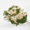 Bouquet sec blanc