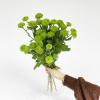 Santini vert (5 tiges)