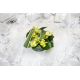 Centre de table pandanus et cymbidium verts - France Fleurs