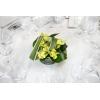 Centre de table pandanus et cymbidium verts - France Fleurs