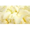Pétales de roses blancs