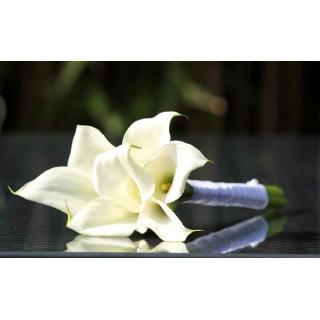 Bouquet demoiselle d'honneur Moderne blanc