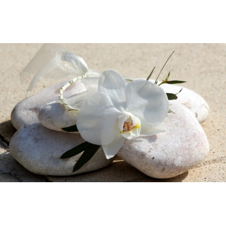 Bracelet phalaenopsis