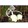 Bracelet rose branchue blanche