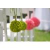 Boules de santinis verts - France Fleurs
