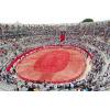 Evénement professionnel 20 - 250 000 pétales de roses - Arènes d'Arles