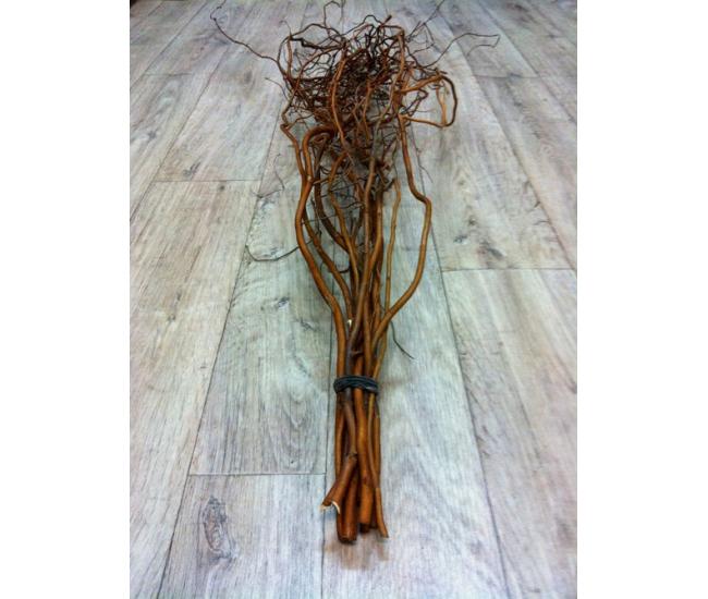 Branche de saule tortueux salix matsudana tortuosa - Branche deco vase ...