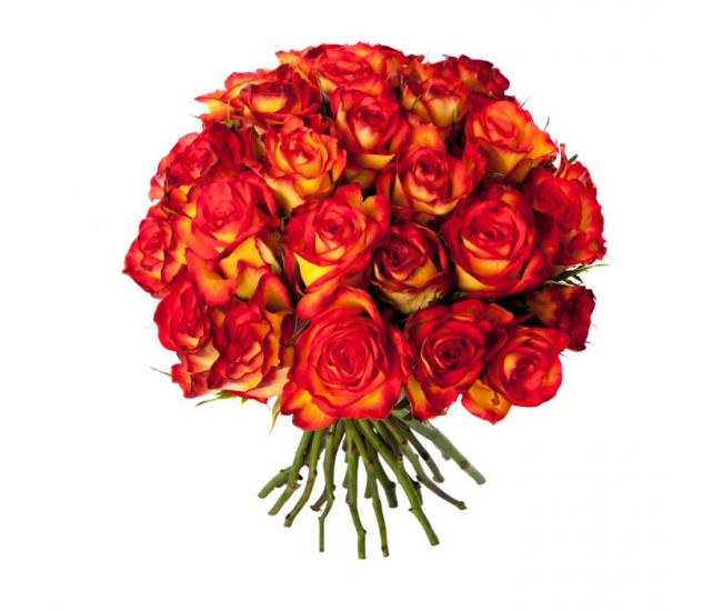 Bouquet 30 roses oranges livraison fleurs france fleurs for Bouquet de fleurs 30 euros