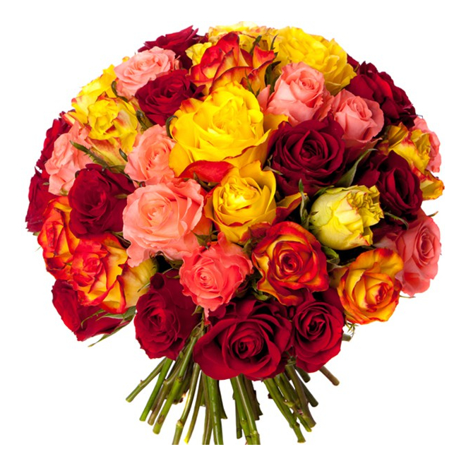 livraison bouquet de 50 roses livraison de fleurs pas cher france fleurs. Black Bedroom Furniture Sets. Home Design Ideas
