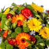 Bouquet Soleil - Livraison fleurs - France Fleurs