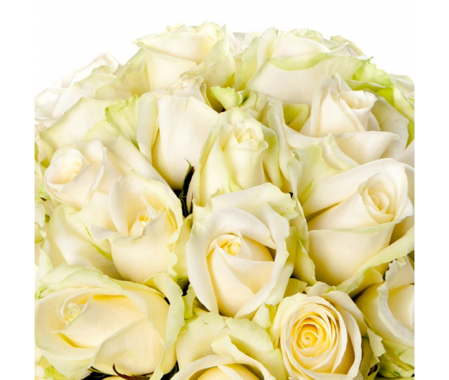 Pin roses blanchesjpg on pinterest for Bouquet fleurs blanches