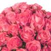 Bouquet 30 roses roses - Livraison fleurs - France Fleurs