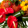 Bouquet de fleurs Exotique - Livraison fleurs exotiques - France Fleurs