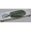 Roebellini (10 tiges) - livraison fleurs coupées - France Fleurs