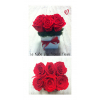Le KuBe Rouge - Roses stabilisées - France Fleurs