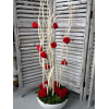Mitsumata blanc en situation avec roses stabilisées rouges - France Fleurs