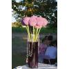 Allium violet en situation - composition de buffet mariage - France Fleurs