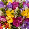 Bouquet de freesias - livraison de fleurs - France Fleurs