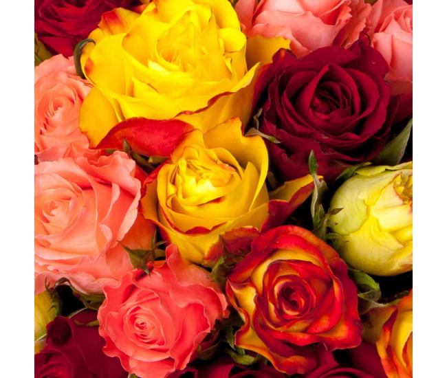 Bouquet De 30 Roses Multicolores Livraison Express