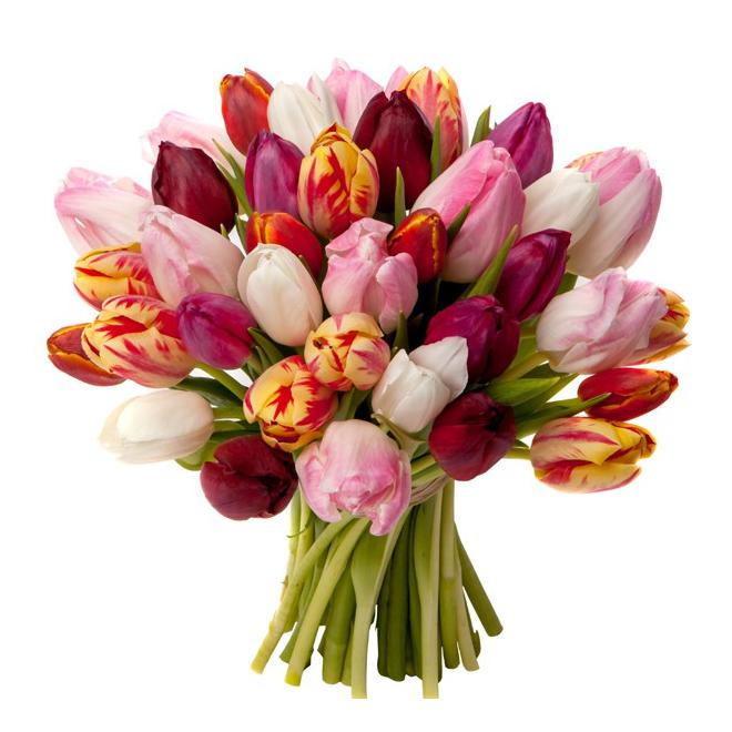 Bouquet de tulipes livraison fleurs pas ch res france for Bouquet de fleurs livraison