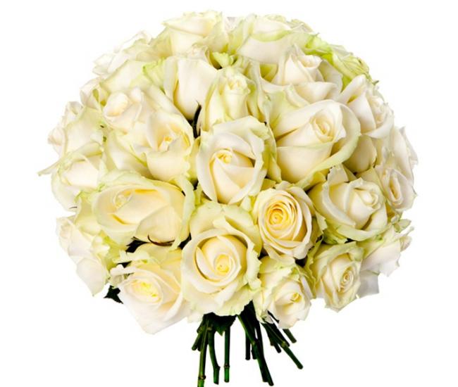 Bouquet 30 roses blanches livraison de roses france fleurs for Livraison fleurs france