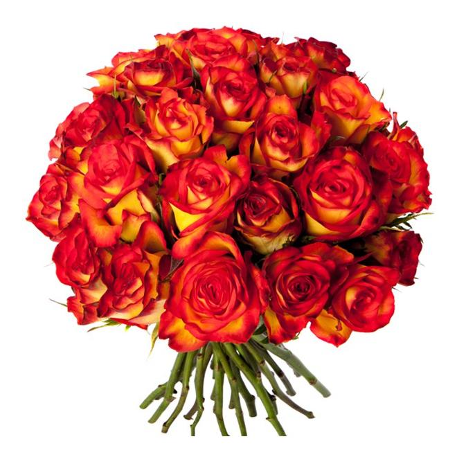 Bouquet 30 roses oranges livraison fleurs france fleurs for Bouquet de fleurs pas cher livraison gratuite