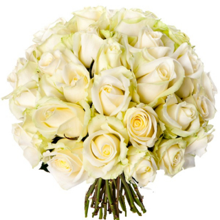 Bouquet 30 roses blanches - livraison roses blanches - France Fleurs